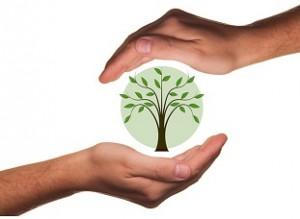 hoe een groene lening aanvragen